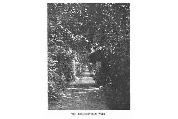 History-19-1900-landscape